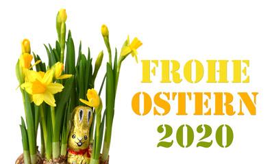 Gelbe Osterglocken, ein Schokoladen-Osterhase mit Frohe Ostern