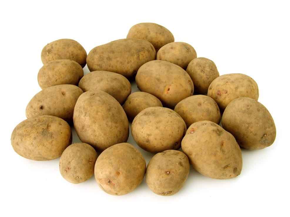 Ein Haufen Kartoffeln