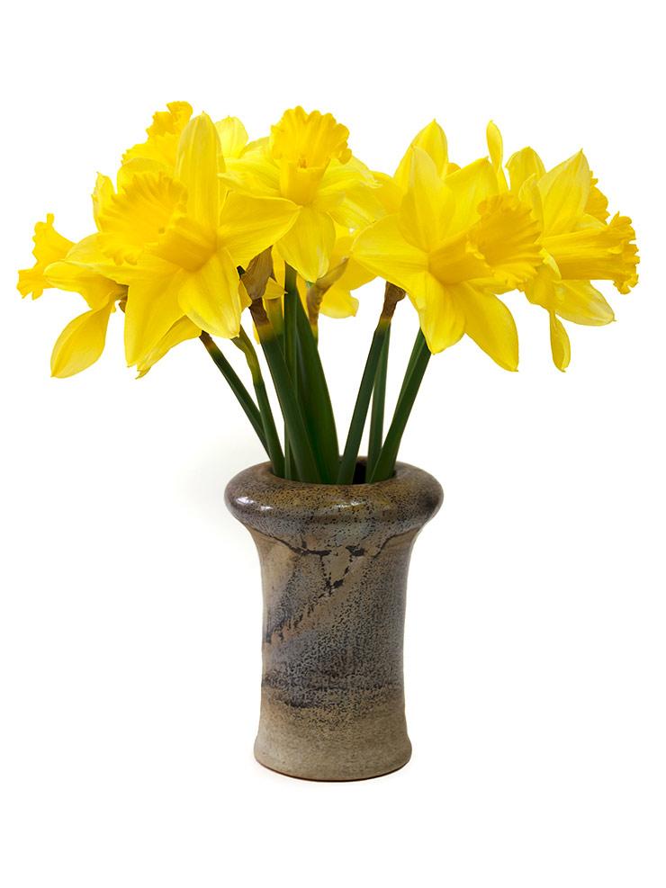 Ein kleiner Strauß Osterglocken in einer Vase