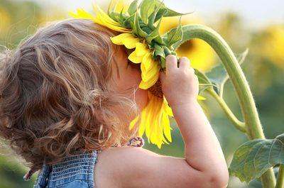 Sommeranfang mit Kind und Sonnenblume